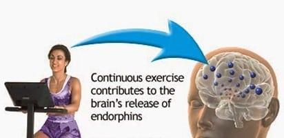 Endorphin1